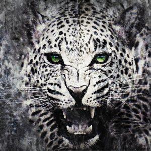 Арт Картина Wild